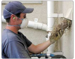 dryer vent cleaning special dryer duct